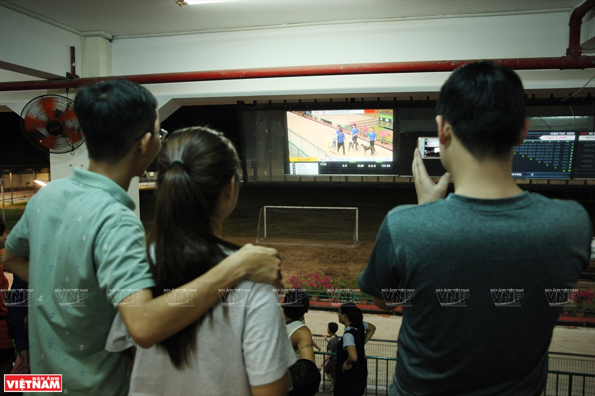 The viewers watch the race on the screen (Photo: VNA)