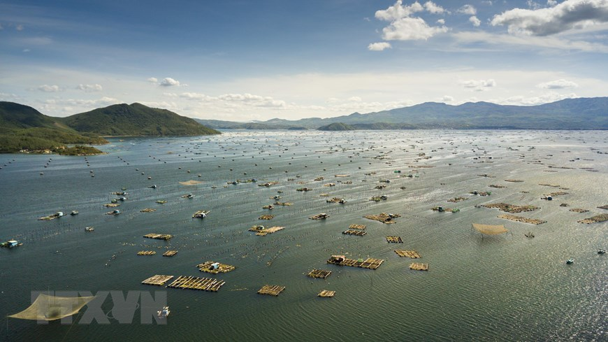 Aerial shot of the lobster farming area (Photo: VNA)