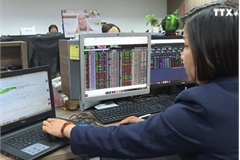 Vietnam's financial market affected by external factors