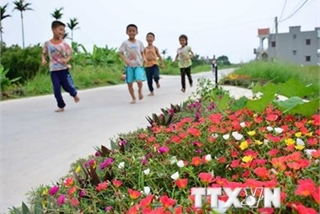 Flower roads beautify villages