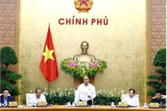 Vietnamese government determined to fulfil set goals: PM