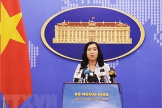 Vietnam values comprehensive partnership with US: spokesperson