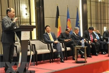 EVFTA to create new opportunities for Vietnam: official