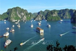 Adjustments to overall planning of Ha Long city announced