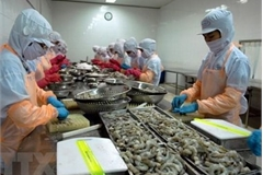 More than 22 billion USD in FDI poured into Mekong Delta