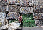 More than 500 scrap containers sent back in first six months