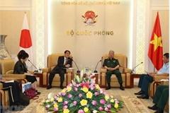 Vietnam, Japan boost cooperation in war consequence settlement