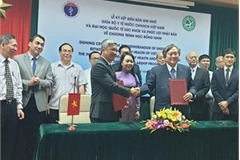 Vietnam, Japan cooperate in health personnel training