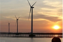 Soc Trang attractive to wind power developers