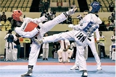 Vietnam win 35 golds at Asian Open Taekwondo Championship