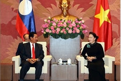 Top legislator meets Lao NA Vice President