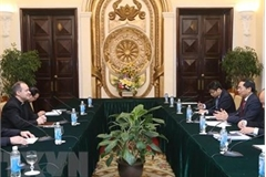 Vietnam-Vatican Joint Working Group convenes 8th meeting