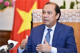 Vietnam's chairmanship helped ASEAN assert centrality in region: Official