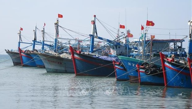 Tasks assigned to put an end to IUU fishing by year's end hinh anh 1