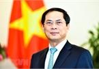 Int'l economic integration a bright spot in Vietnam's external affairs: Deputy FM