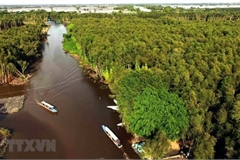 New planning views climate change as opportunity for Mekong Delta