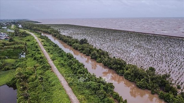 New planning views climate change as opportunity for Mekong Delta hinh anh 2