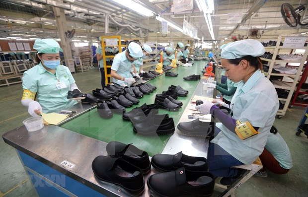 Measures sought to help footwear industry get back on front foot hinh anh 2
