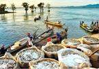 Mekong Delta region seeks to revive tourism industry