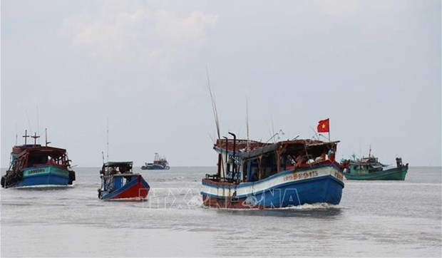 Fishing vessels to be closely controlled to end IUU hinh anh 1