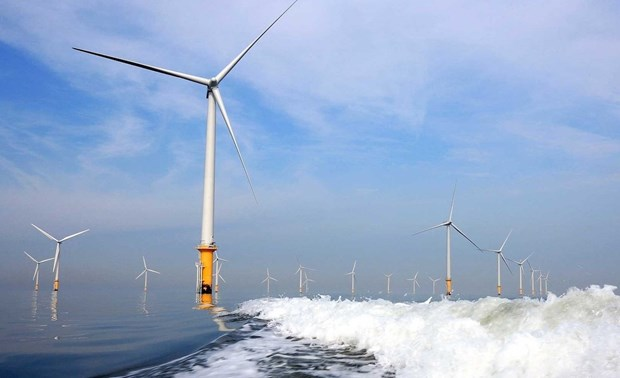 Vietnam has substantial potential for offshore wind power: report hinh anh 1