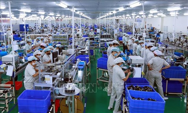 Vietnamese enterprises build resilience amid pandemic hinh anh 2