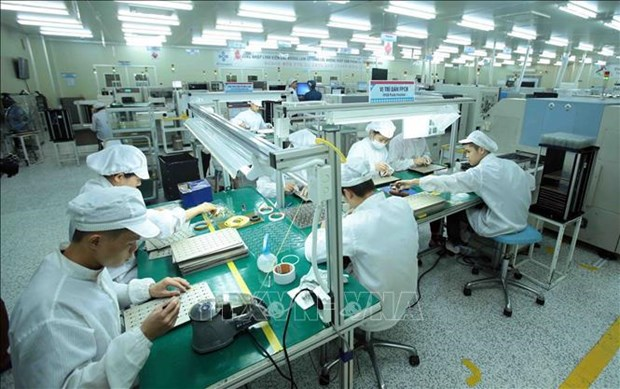 Vietnamese enterprises build resilience amid pandemic hinh anh 3