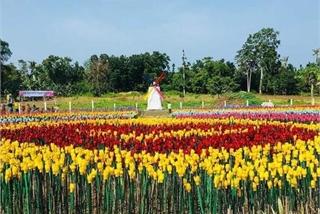 Philippine city turns plastic trash into flowers