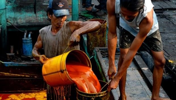 Indonesia to sue EU over palm oil industry concerns hinh anh 1