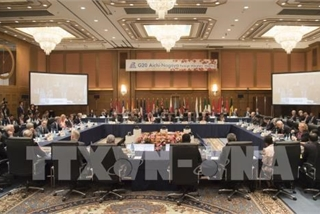 Vietnam attends G20 Foreign Ministers' Meeting in Japan