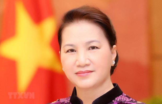 Parliamentary cooperation a new pulse for Vietnam – Russia ties: ambassador hinh anh 1
