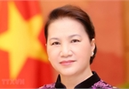Parliamentary cooperation a new pulse for Vietnam – Russia ties: ambassador
