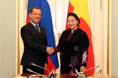 Vietnamese NA leader, Russian PM discuss multifaceted relations
