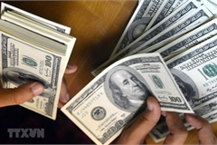 Remittances to Vietnam estimated at $16.7 billion