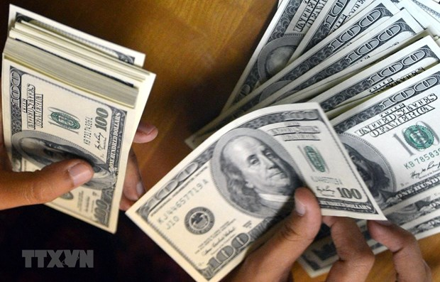 Remittances to Vietnam estimated at 16.7 billion USD hinh anh 1
