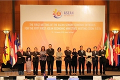Prioritised orientations in ASEAN economic pillar in 2020 unveiled