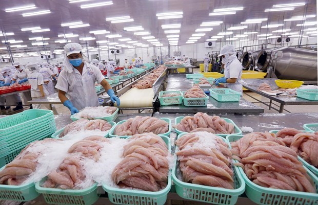 Vietnam aims for 9 bln USD worth of fishery exports in 2020 hinh anh 1