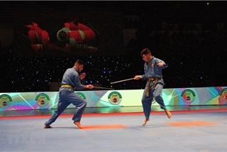 Algerian tournament promotes Vietnamese martial art