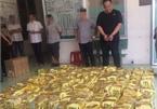 HCM City police seize biggest-ever drug amount in 2019