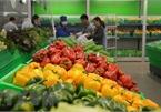 Vietnam targets $5 billion from fruit, vegetable exports in 2020
