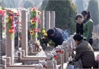 Vietnamese preserve tomb-sweeping tradition