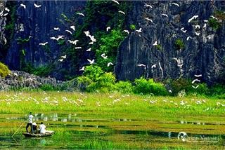 Exploring Van Long Wetland Nature Reserve in Ninh Binh