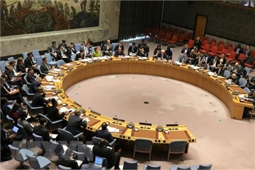 Vietnam chairs UNSC meeting on issues in Cyprus, Libya