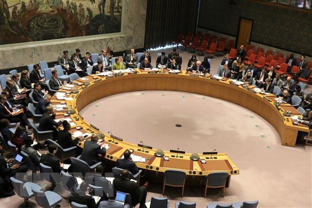 Vietnam chairs UNSC meeting on issues in Cyprus, Libya hinh anh 1