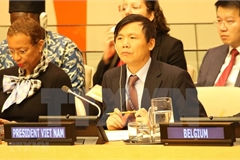 Vietnam successfully fulfils role as President of UNSC in January
