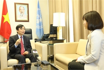 Vietnam achieves targets during UNSC presidency month: Ambassador