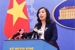Vietnam working closely with China in nCoV combat: spokeswoman
