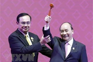 Dual diplomatic responsibility offers rare opportunity for Vietnam