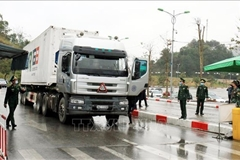 Vietnam-China auxiliary border gates reopened to facilitate trade