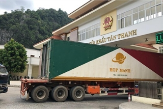 nCoV outbreak impacts Vietnam's trade with not only China: official